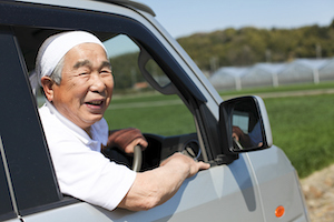 Looking for a Japanese Car Exporter
